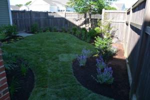 Backyard Landscaping Easton Village